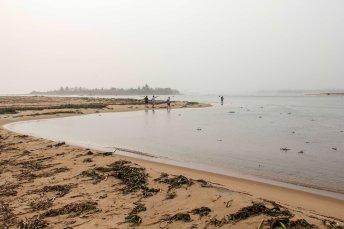 article-ivoire-118-2