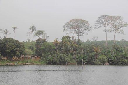article-ivoire-200-2