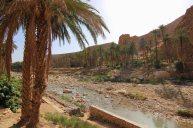 wadi-rumm-103