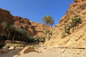 wadi-rumm-106