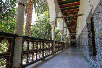 wadi-rumm-242