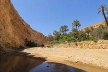 wadi-rumm-80