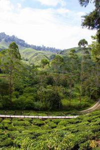 Malaisiee-279