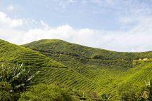 Malaisiee-309