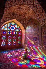 Shiraz-173