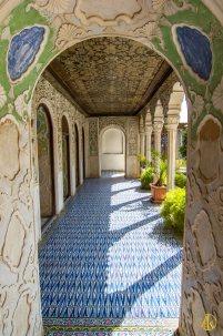 Shiraz-196