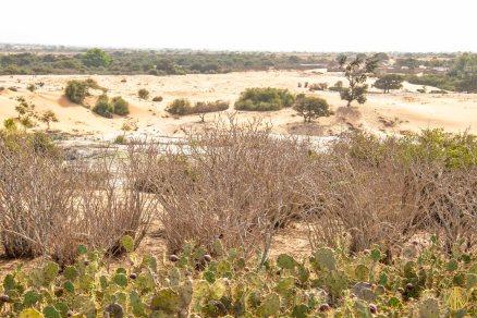 Dakar-1