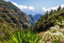 Madeira-193