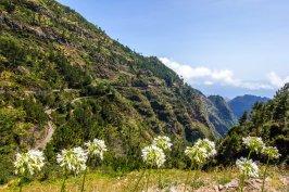 Madeira-194