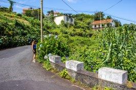 Madeira-262