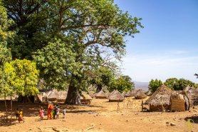 Sénégal oriental-85
