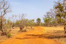 Sénégal oriental-9