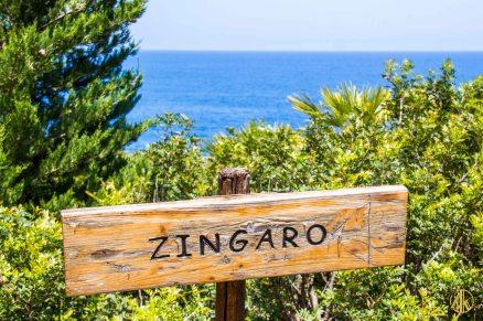 Zingaro-31
